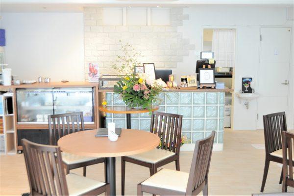 Syoyu・kyafe元町    咖啡厅 Erizehikaru