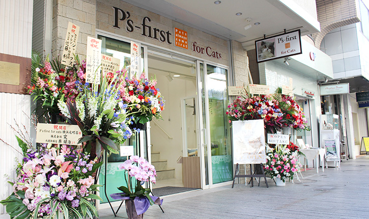 P's-first for cats 横滨元町店