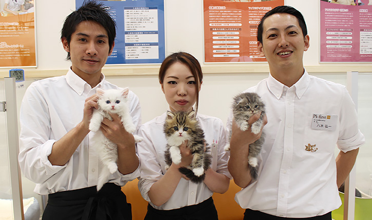 P's-first for cats 横浜元町店